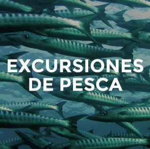 13-excursiones-pesca