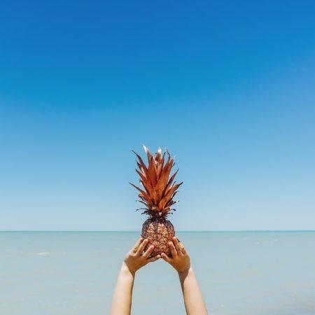sea-pineapple