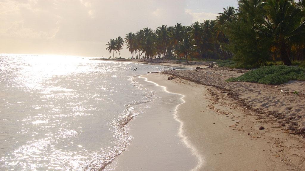 isla-saona-island-6
