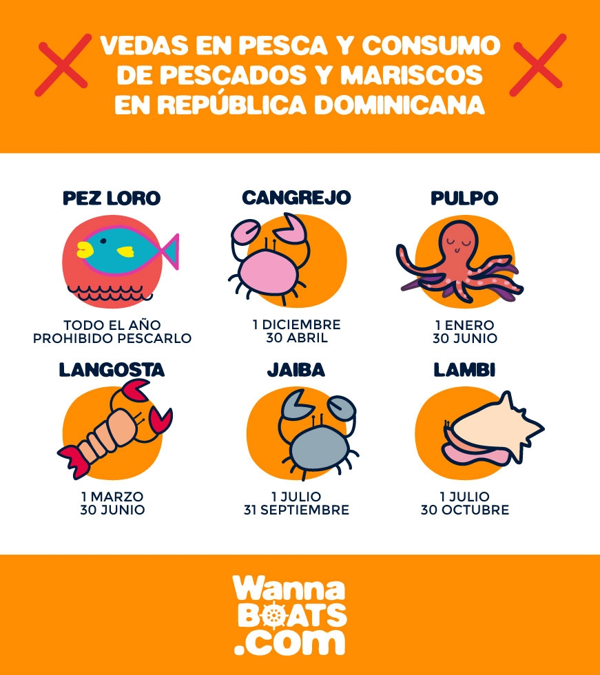 https://wannaboats.com/wp-content/uploads/2018/03/veda-pescados-mariscos-republica-dominicana.jpg