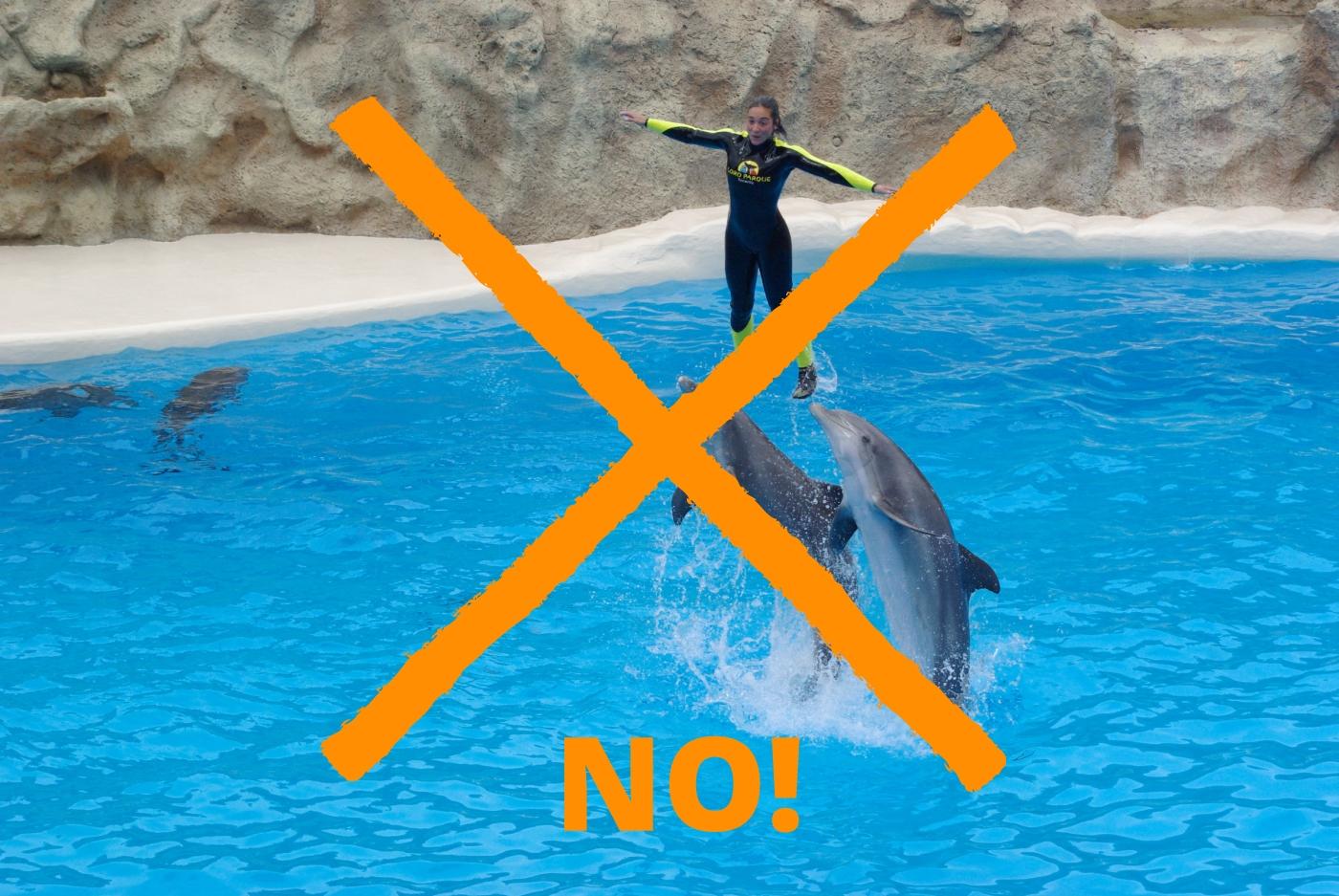 no-delfinarios-dolphinariums