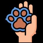 hands-and-gestures