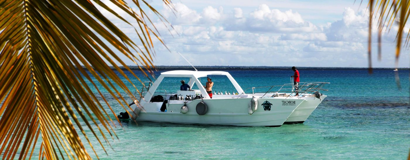 Saona or Catalina private tour Catamaran scuba diving