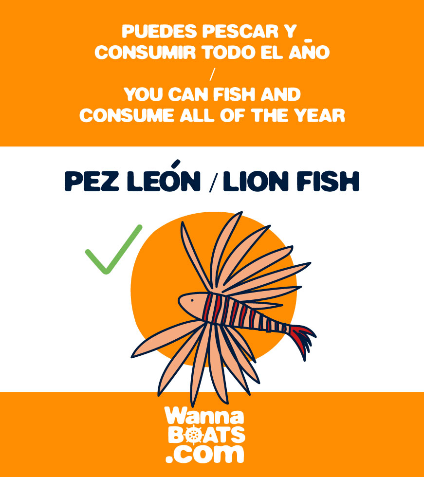 puedes-pescar-pez-leon-can-fish-all-year-lion-fish